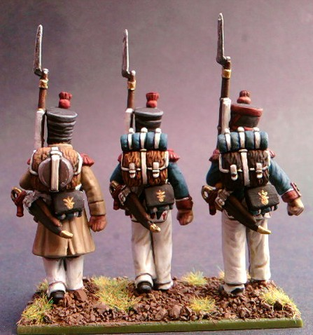 Infantry de ligne Perry 28mm Sp_a1615
