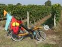 Premier petit voyage en vélo couché, Le Croisic-Orléans Img_3512
