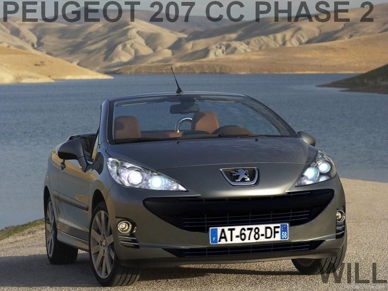 2009 - [Peugeot] 207 Restylée 207_ph10