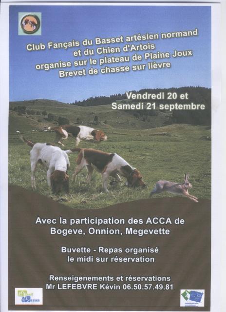 Brevet de chasse sur lièvre à Plaine-Joux (74) 2v8iia10