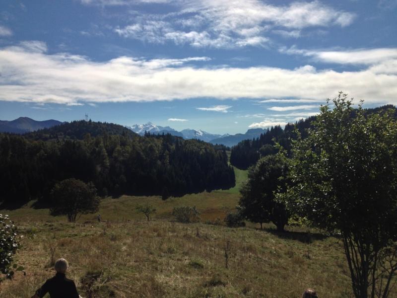Brevet de chasse sur lièvre à Plaine-Joux (74) Img_1010
