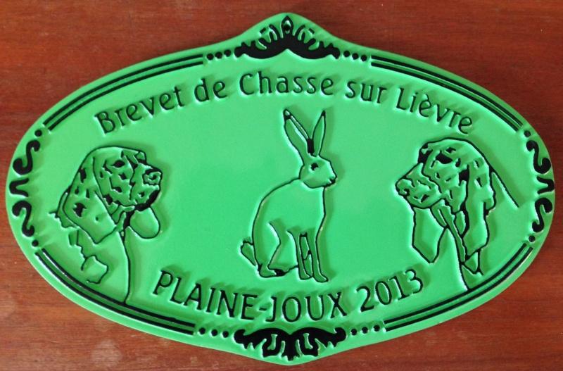 Brevet de chasse sur lièvre à Plaine-Joux (74) Img_1012