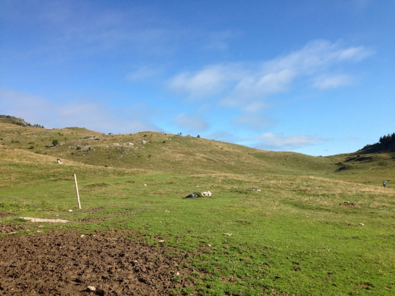 Brevet de chasse sur lièvre à Plaine-Joux (74) Img_1013