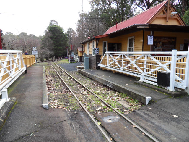 Puffing Billy Puffin17