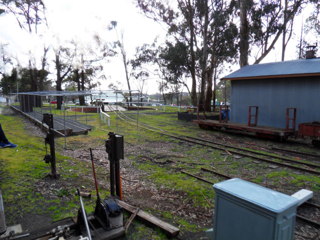 Puffing Billy Puffin20