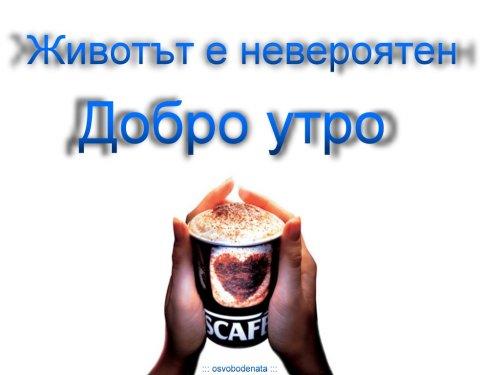 Добро утро с кафе! Img_5910