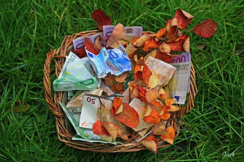 sondage: faut il ramasser les feuilles en automne ? Feuill10