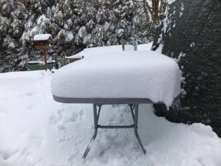 Winter Dscf1521
