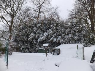 Winter Dscf1522
