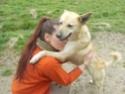 Helisa, x berger des shetland, née 2010 - Tabanac 33 Canell13