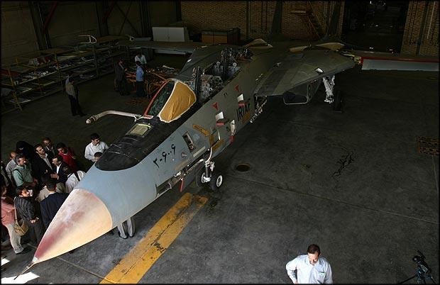 F-14 Tomcat 10273110