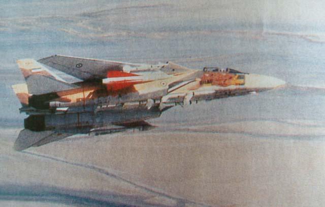 F-14 Tomcat F14haw10