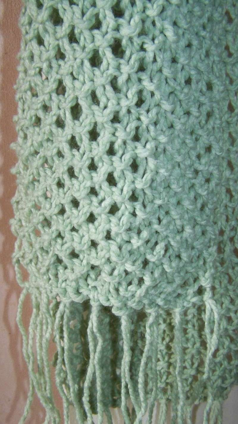 tricots de steph - Page 2 100_5111