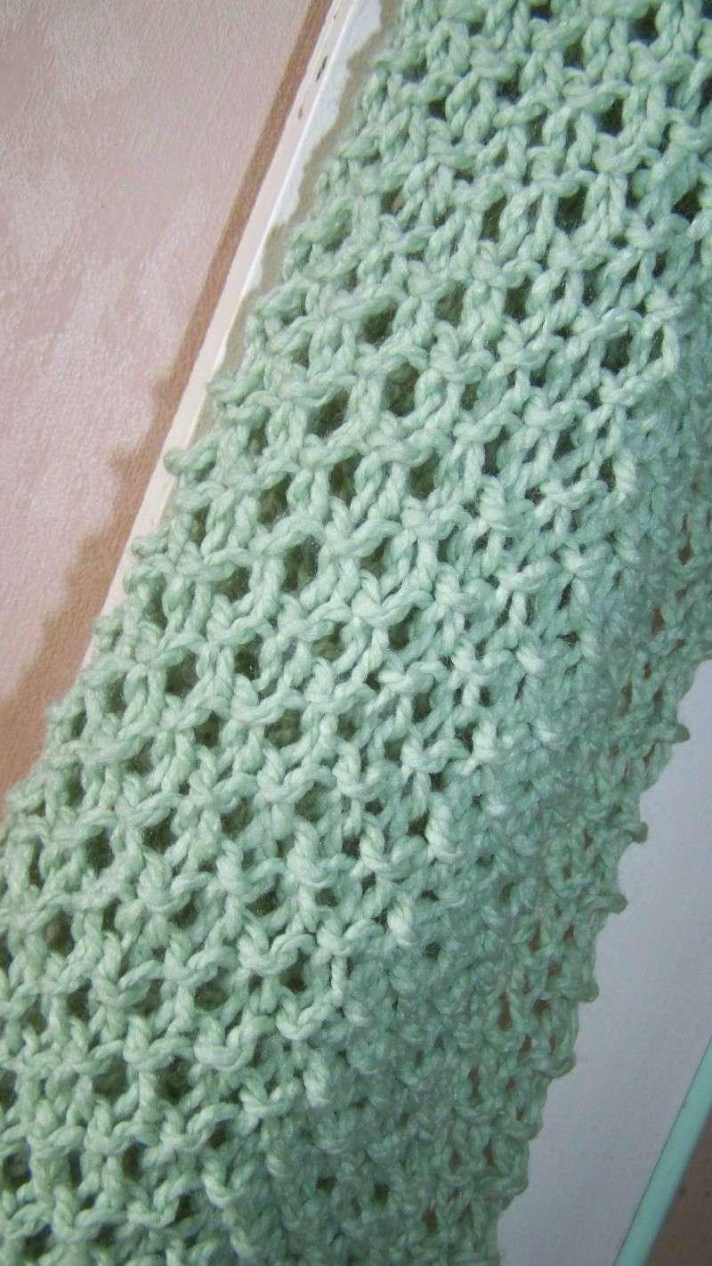 tricots de steph - Page 2 100_5112
