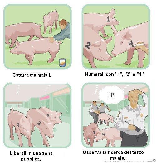 A proposito di maiali - Pagina 2 Maiali10