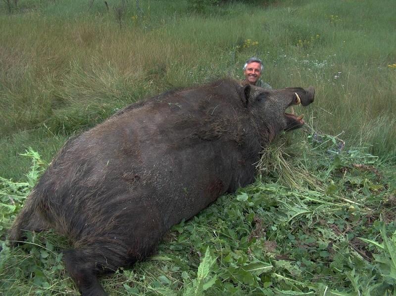 Remy a choppé un cochon ce week end Cochon11