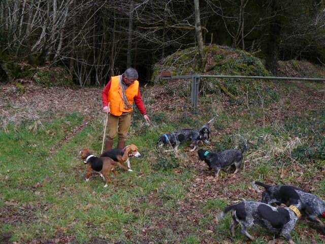 Brevet de chasse sur chevreuil à Bourbriac (22) 9 et 10 mars Rollan10