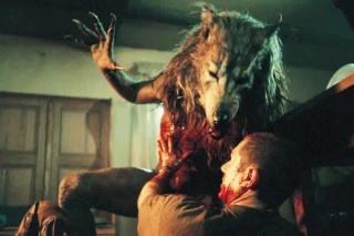 Quel type de Loups-Garous préférez-vous ? Dogsol10