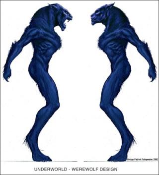 Quel type de Loups-Garous préférez-vous ? Underw10