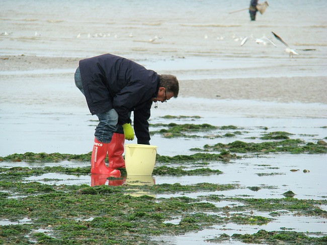 Les photos de la rencontre Normandie-Belgique-Bretagne Dsc08928