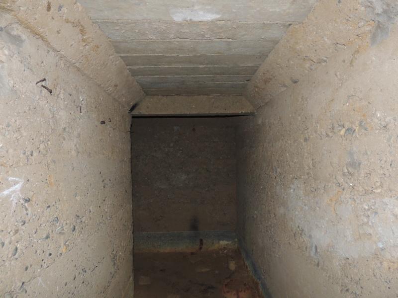 Abri n°9 - Ruisan Dscn4515