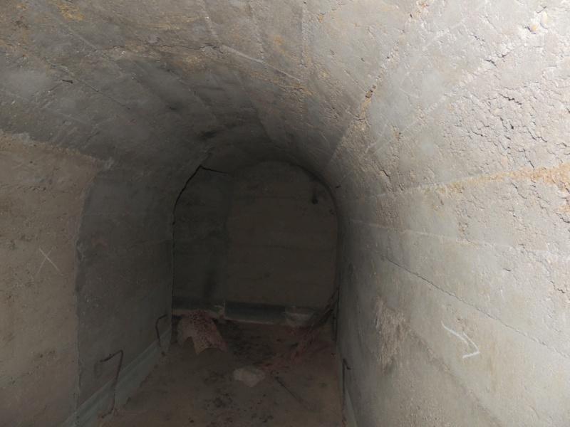 Abri n°9 - Ruisan Dscn4517