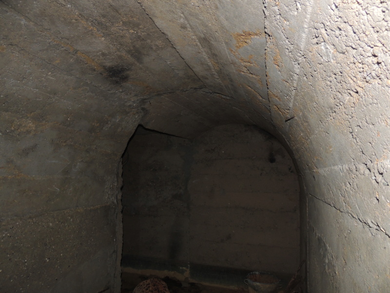 Abri n°9 - Ruisan Dscn4518