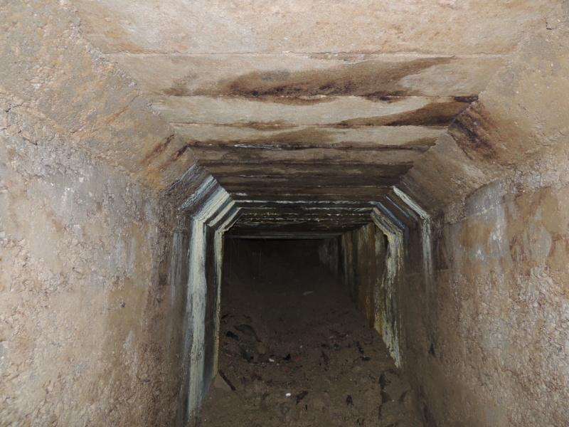 Abri n°9 - Ruisan Dscn4519