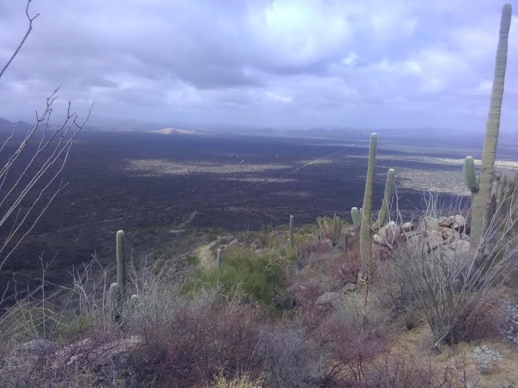 Busqueda de pepitas de oro en Sonora 2019 Paisaj10