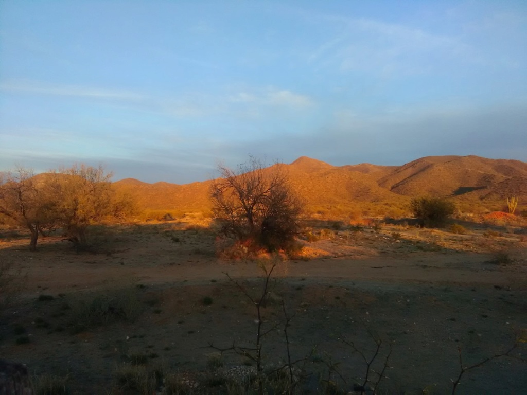 Busqueda de pepitas de oro en Sonora 2019 Uno_de10