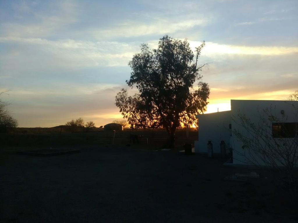 Busqueda de pepitas de oro en Sonora 2019 Uno_de12