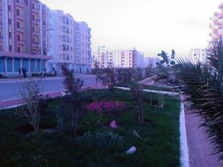 صور لمدينة العلمة(سطيف) Photos41