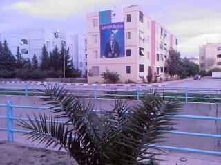 صور لمدينة العلمة(سطيف) Photos44