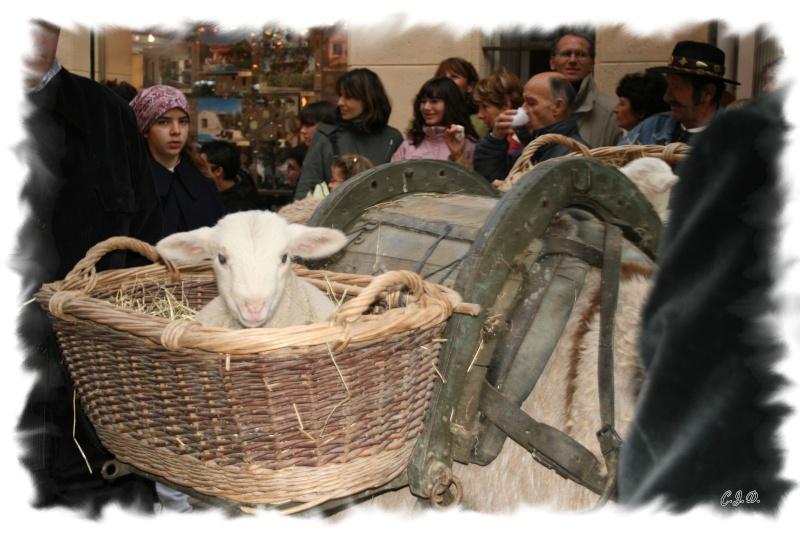 L'hiver, les fêtes, etc... Image210
