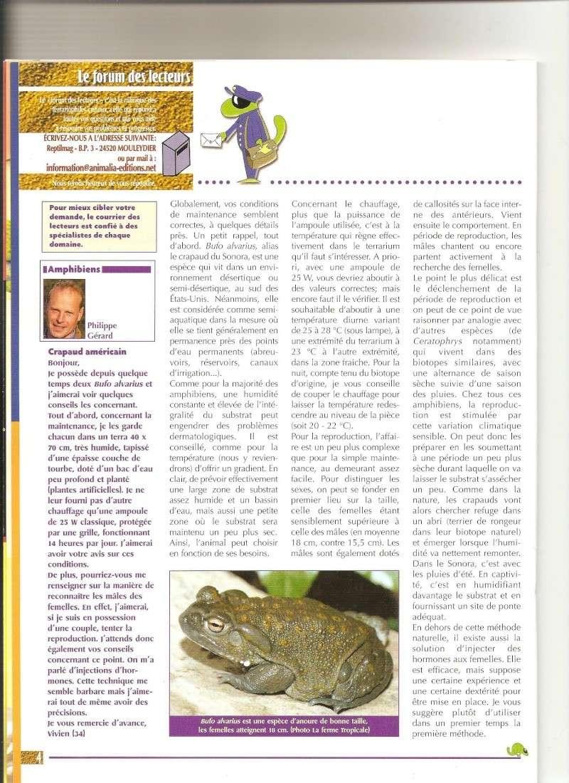 BUFO ALVARIUS - Page 2 Bufos110