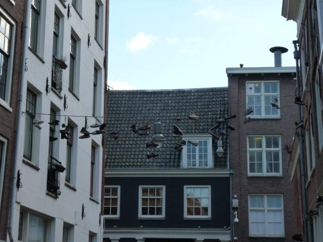 Amsterdam, ville bizarre P1120812