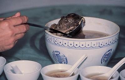 الصينيين ياكلون اجنة (الجنين) 710