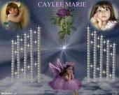 Memorial Site for Caylee Caylee14