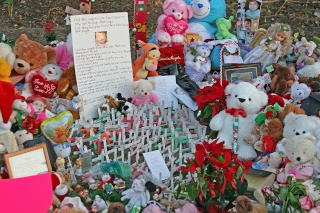Memorial Site for Caylee Img_8816