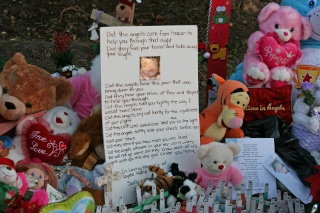 Memorial Site for Caylee Img_8818