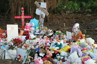 Memorial Site for Caylee Img_8820