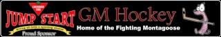 New GM Hockey Banner - Page 3 Gm_cen12