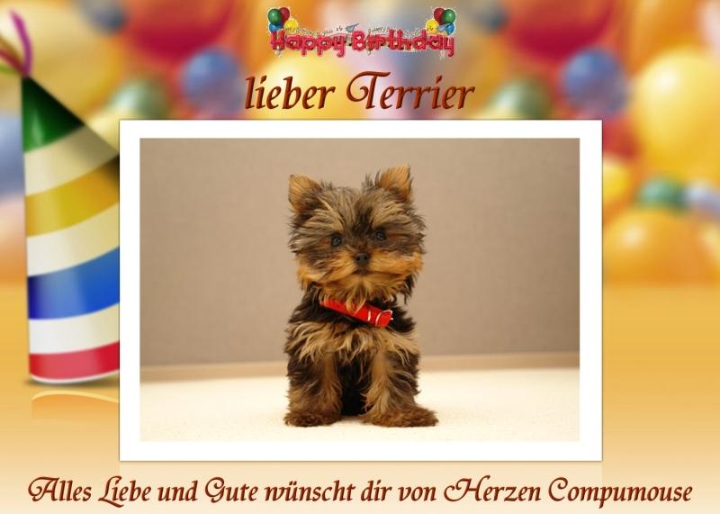 Herzlichen Glückwunsch Dir Terrier Terrie10