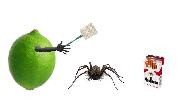 General randomness Limes10