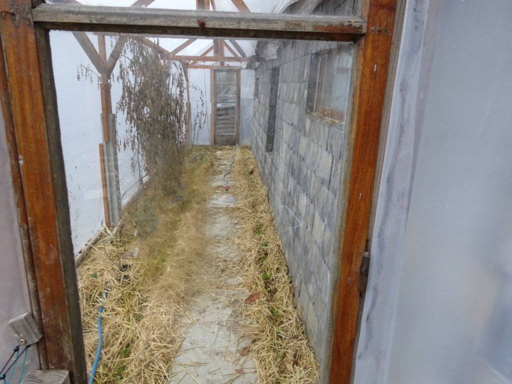 Rénovation demi greb en Savoie Dsc00010