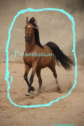 [Presentation] paulajtmgrave Araber10