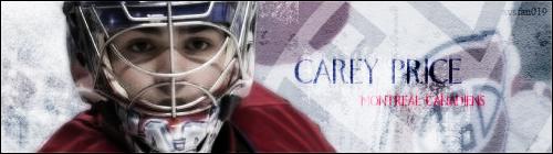 Ligue De Hockey Simulé Montréal