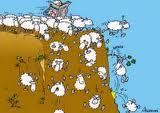Salut à tous Mouton10