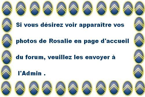 Photo sur la page d'accueil - Page 3 Pancar10