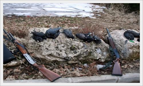 Meke avcılarına 7 bin liralık ceza D9beb110